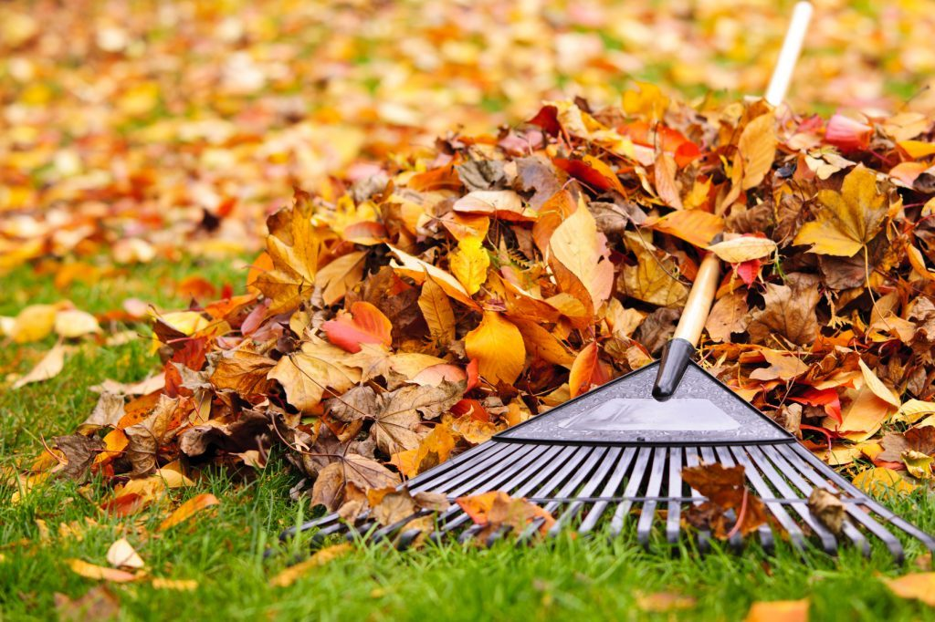 Fall Home Maintenance Checklist - Fixd Repair