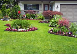 care for your lawn and garden during spring